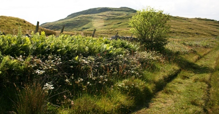 Dunskeig Hill, Clachan